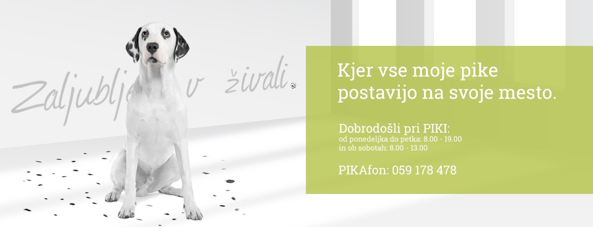 veterinarski-center-pika-maribor-zaljubljeni-v-zivali