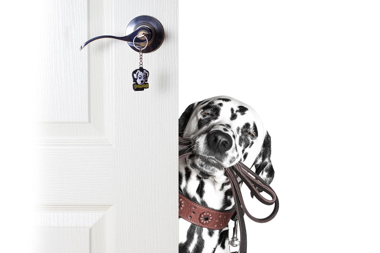 PikaŠOP dodatki povodci za pse