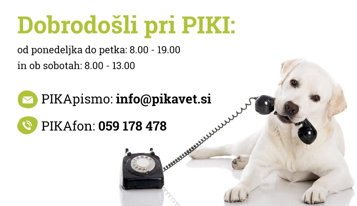 Pika kontakt Veterinarski center PIKA